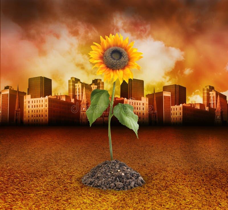 De Vernietiging van de stad met het Groeien van de Zonnebloem van de Aard vector illustratie