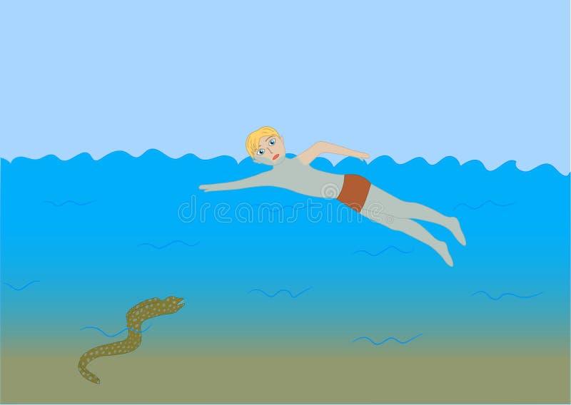 De verraderlijke moray palingen volgen zwemmer vector illustratie