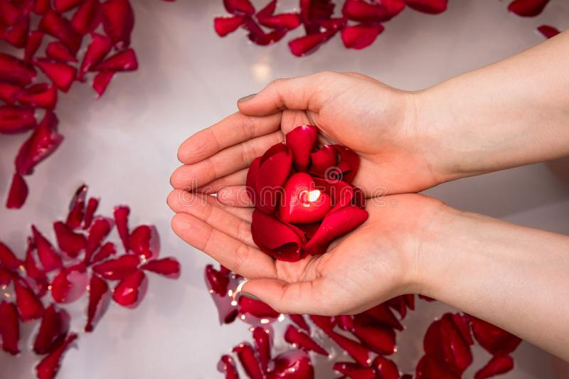 De verrassing van de valentijnskaartendag, sluit vrouw omhoog het houden rood de bloemblaadjes toenamen en hoort kaars in handen stock foto