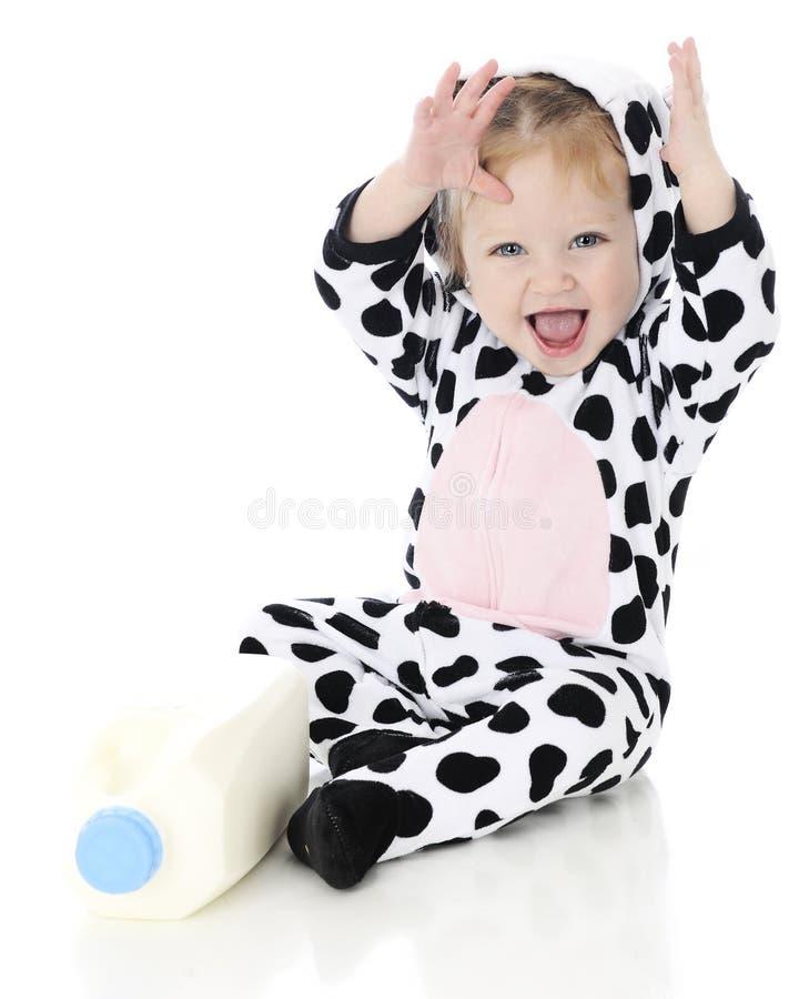 De Verrukking van Holstein royalty-vrije stock afbeeldingen