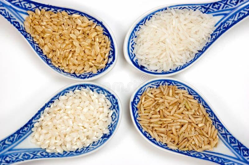 De verscheidenheden van de rijst royalty-vrije stock fotografie