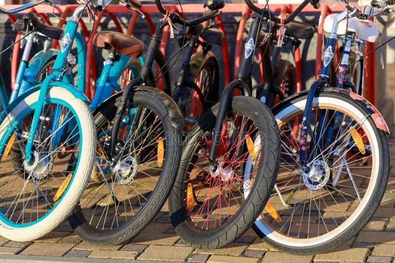 De verscheidenheid van fietsen die voor huur worden aangeboden is in het parkeerterrein Weergeven op de wielen van fietsen in rij stock fotografie