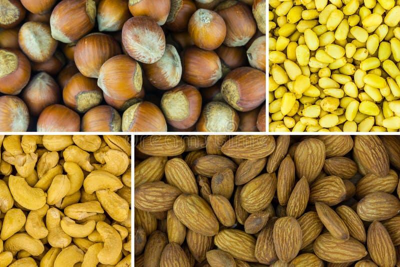 De verscheidenheid van het nootassortiment van heerlijke voedzame snack Van de de cedercachou van de amandelhazelnoot voedzame de royalty-vrije stock afbeelding