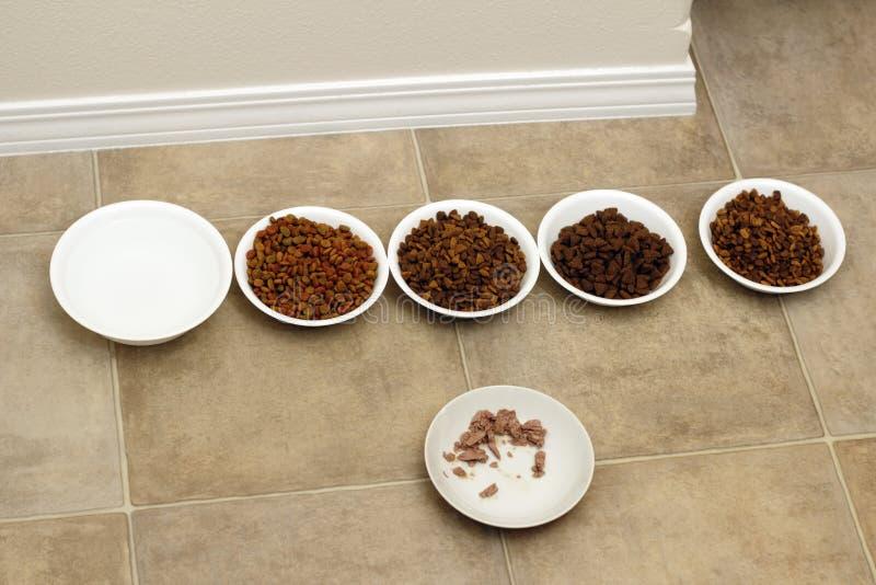 De Verscheidenheid van het Voedsel van de kat royalty-vrije stock foto's