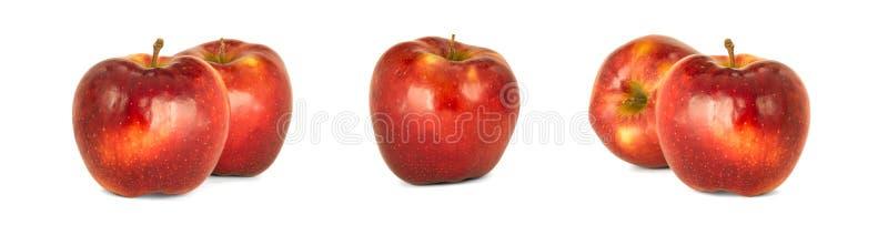 De verscheidenheid van rijpe rode domestica ` Jonagold ` van appelenmalus isoleert wh stock afbeeldingen