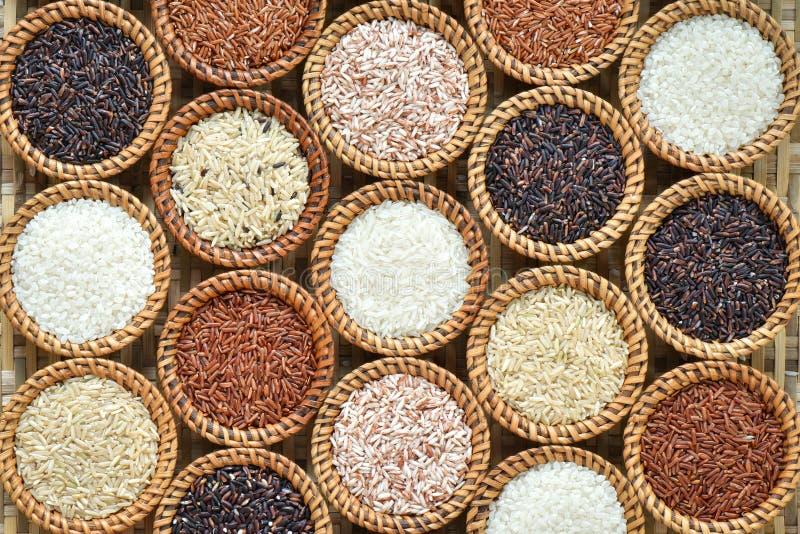 De verschillende achtergrond van de rijstinzameling stock afbeeldingen