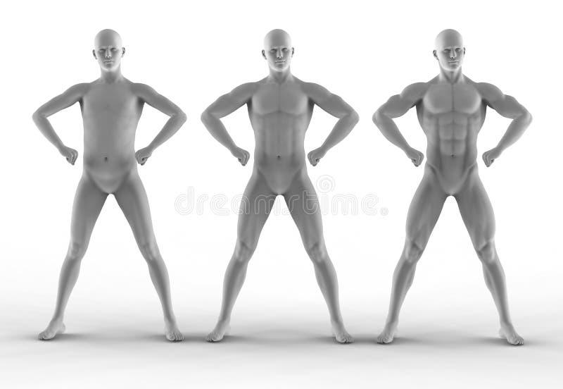 De verschillende bodybuilder van het portret, stelt stock illustratie