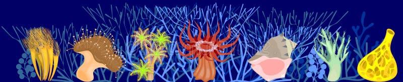 De verschillende koralen op blauwe mariene achtergrond met gestileerd vertakten zich koralen vector illustratie