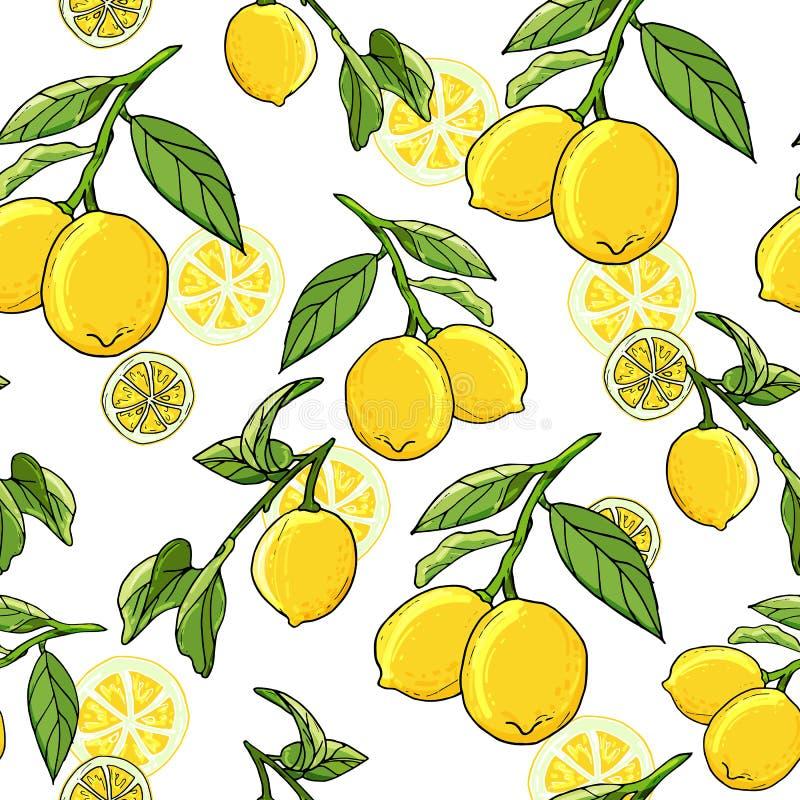 De verse citroenen overhandigen getrokken achtergrond Het idee van het krabbelbehang stock illustratie