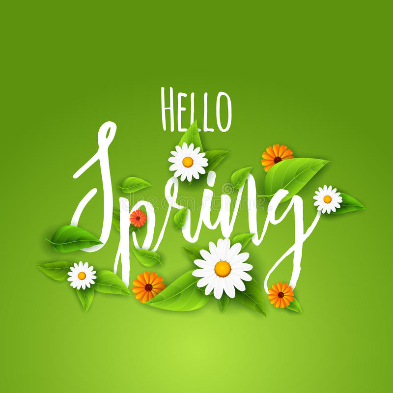 De verse de lenteaffiche als achtergrond met doorbladert, kamille en bloemen Hello-de Lente stock illustratie