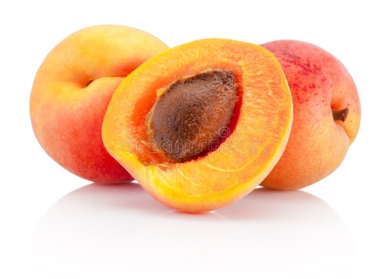 De verse die vruchten van de besnoeiingsabrikoos op witte achtergrond worden geïsoleerd stock foto's