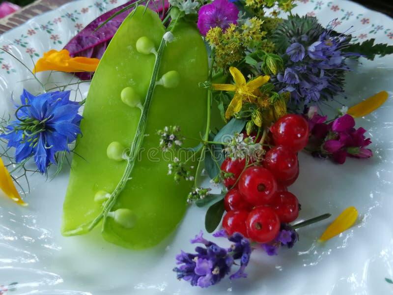 De verse erwten van de saladesneeuw royalty-vrije stock foto's