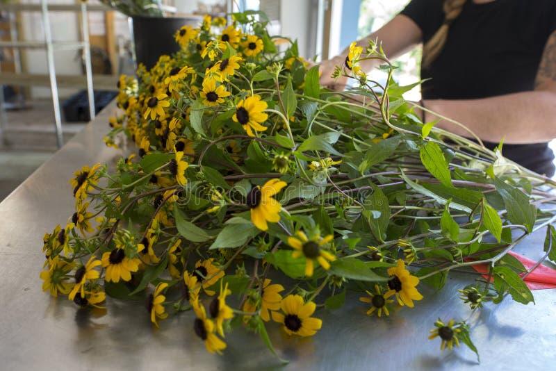 De verse geplukte bloemen van het bloemlandbouwbedrijf stock fotografie