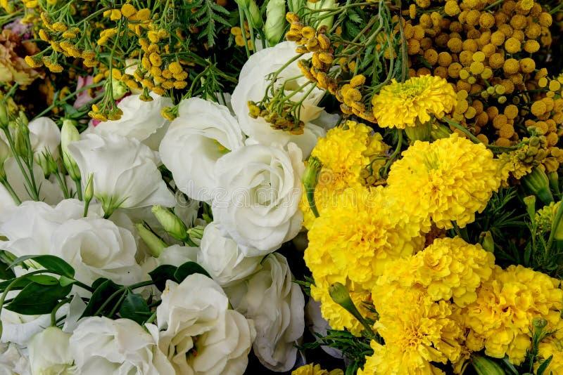 De verse geplukte bloemen van het bloemlandbouwbedrijf stock afbeelding