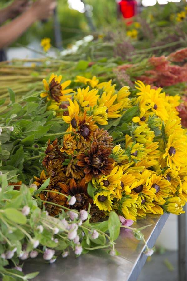 De verse geplukte bloemen van het bloemlandbouwbedrijf royalty-vrije stock afbeelding