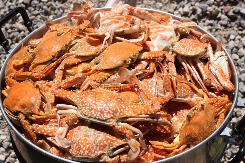 De verse gestoomde krabben van het overzees zijn heerlijk royalty-vrije stock foto
