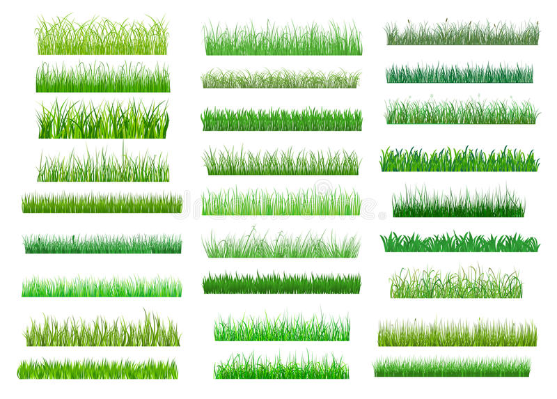 De verse groene grenzen van het de lentegras royalty-vrije illustratie