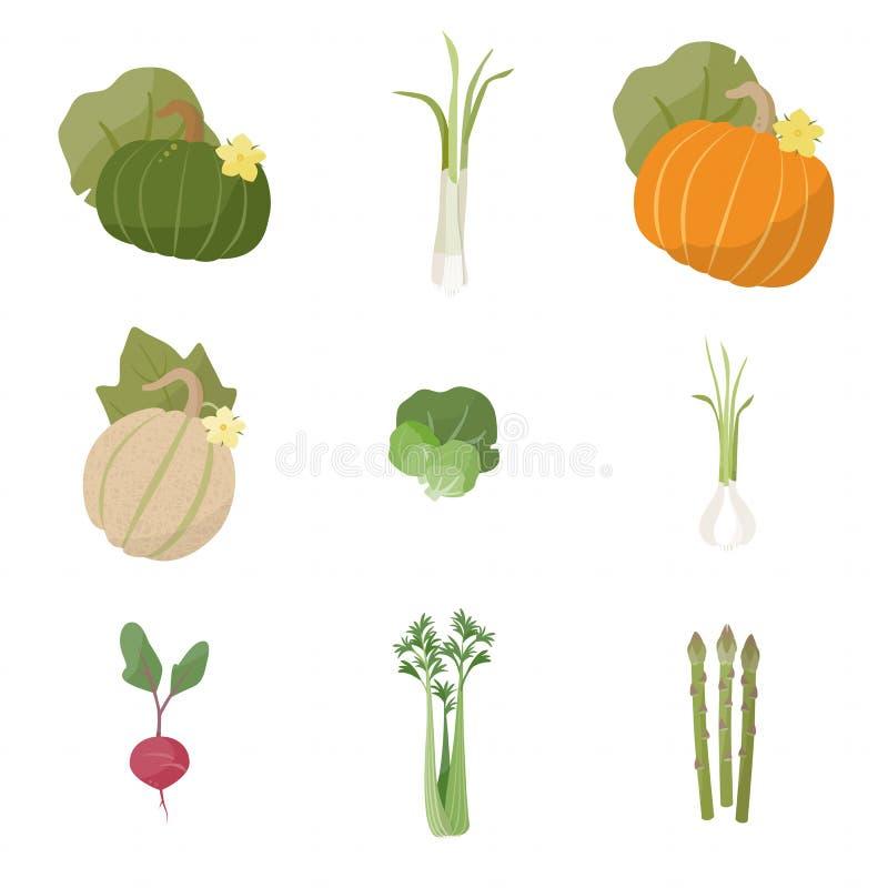 De verse groenten van de tuin vector illustratie