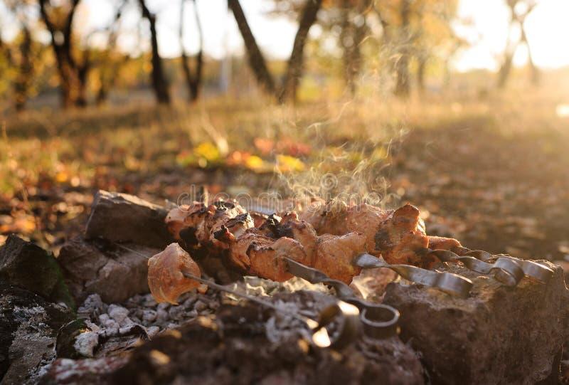 De verse hete vleespen van de vleesbarbecue op de achtergrond van de herfstbladeren en bosclose-up royalty-vrije stock afbeelding