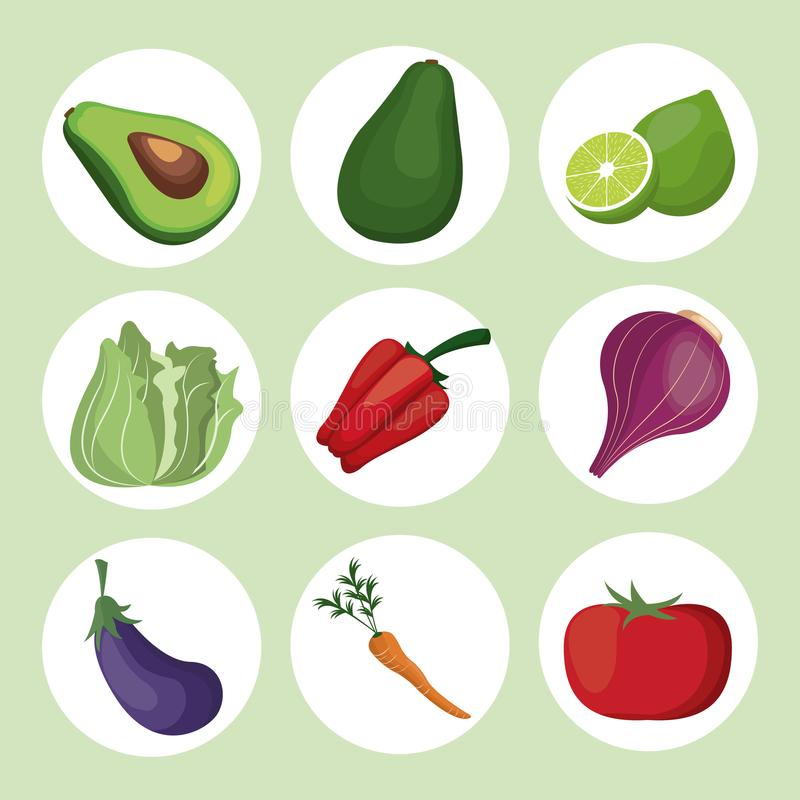 De verse ingrediënten van inzamelingsgroenten vector illustratie