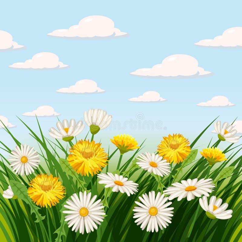 De verse lente, madeliefjes en paardebloemen, gras vector illustratie