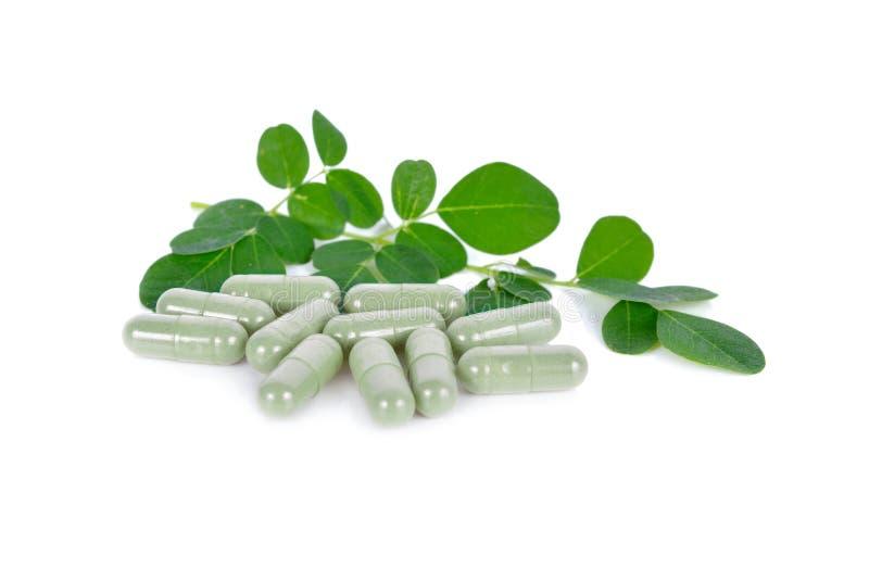 De verse moringa bladeren en vatten kruiden op witte achtergrond samen royalty-vrije stock foto