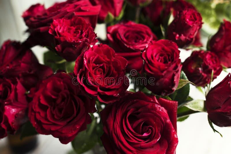 De verse Rode Verfrissing van de de Regelingsaard van Rozenbloemen stock afbeeldingen