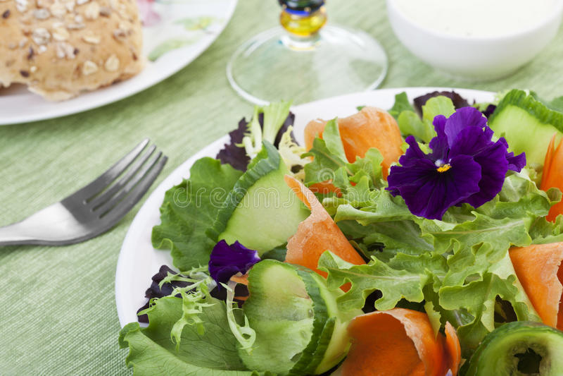 De verse Salade van de Lente stock fotografie