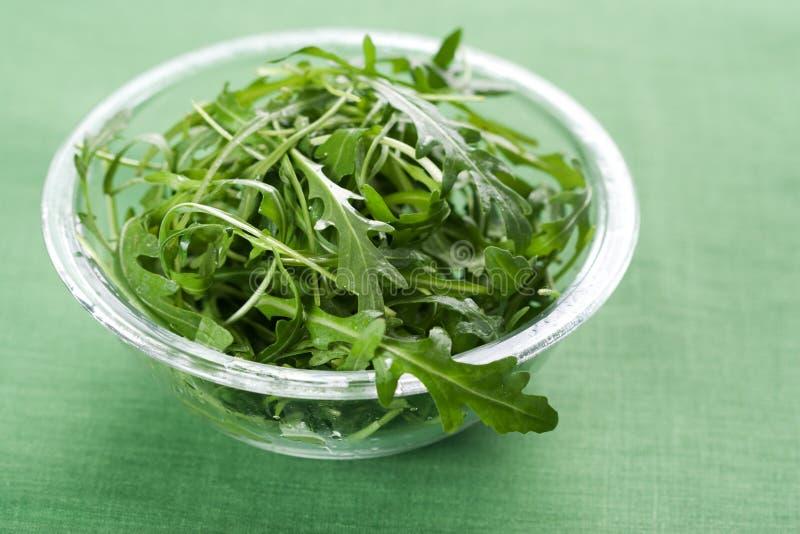 De verse salade van Rucola royalty-vrije stock fotografie