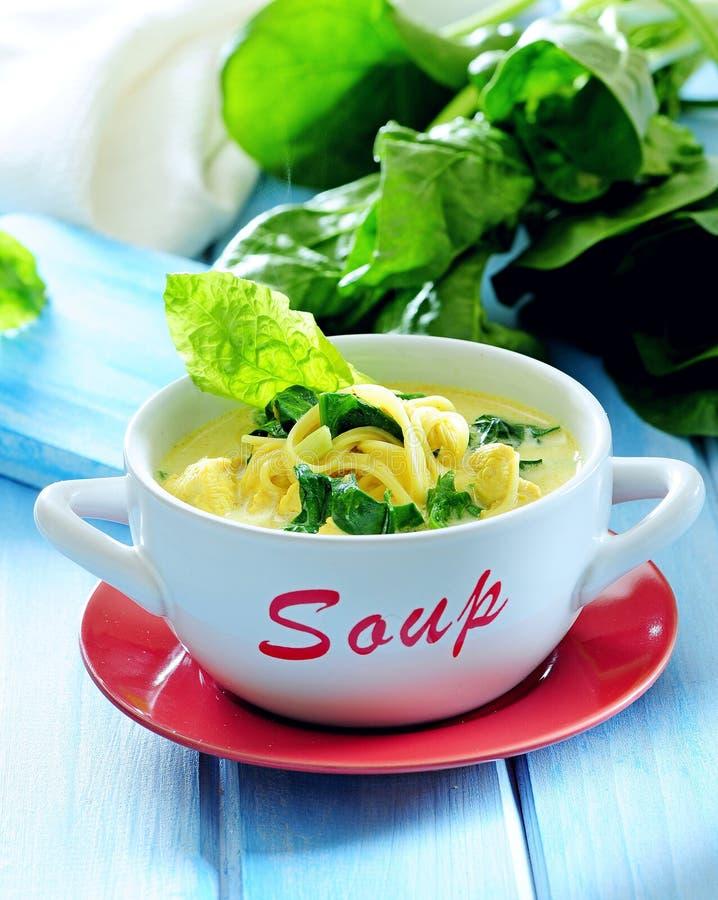 De verse soep van de spinazieroom met noedel royalty-vrije stock afbeeldingen