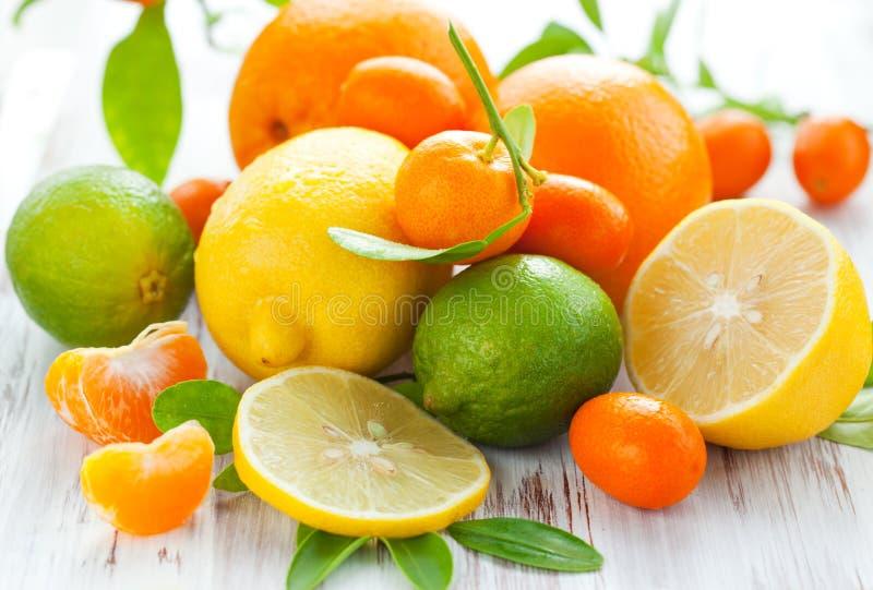 De verse vruchten van de citrusvrucht royalty-vrije stock afbeeldingen