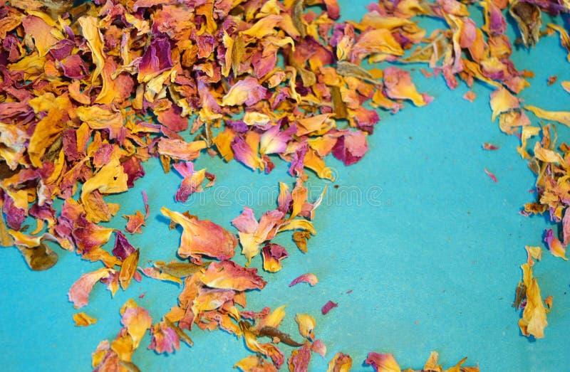 De verspreide droge bloemblaadjes van thee namen op blauwe achtergrond toe royalty-vrije stock afbeeldingen