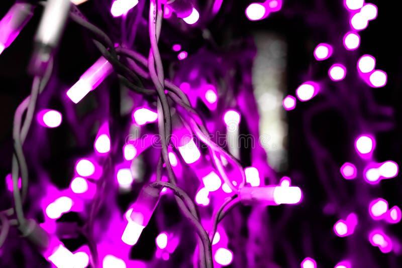 De verstralers van lilac slinger royalty-vrije stock foto's