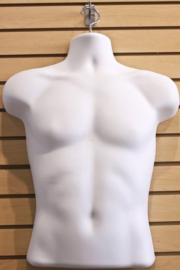 De Vertoning van het torso stock foto's