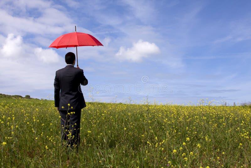 De verzekeringsman royalty-vrije stock afbeelding