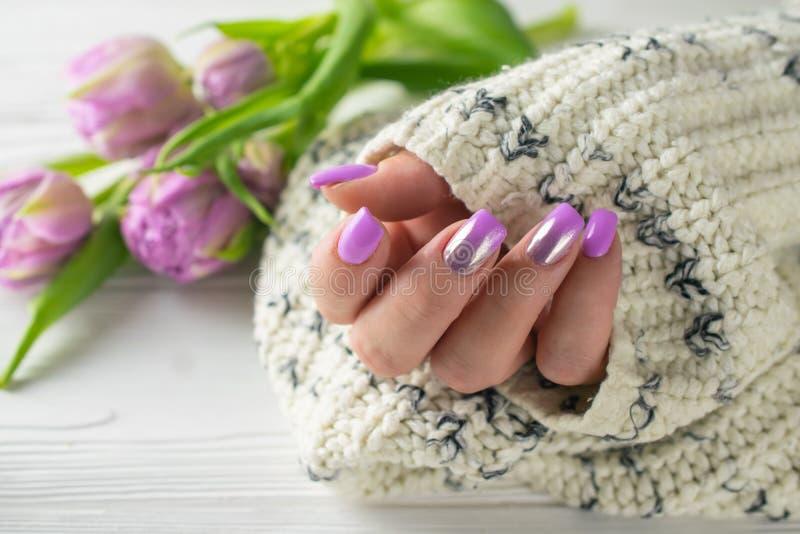De verzorgde handen van de vrouw met purpere spijkervernis, manicure, handzorg stock afbeelding