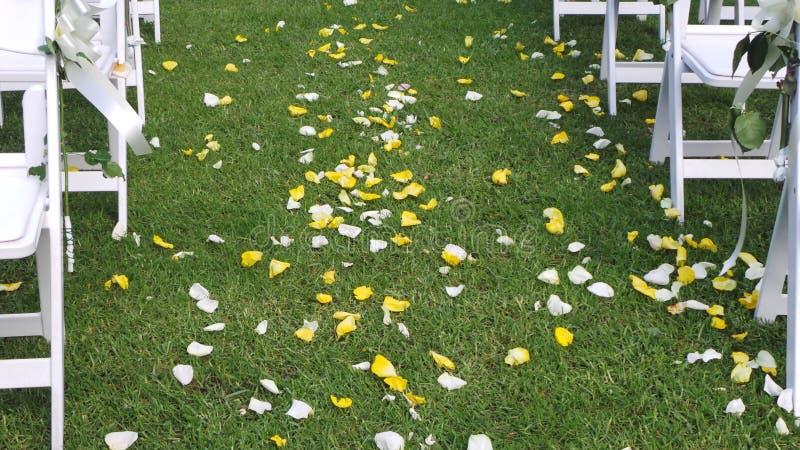 De viering van het huwelijk Geel & Wit nam bloemblaadjes onderaan de doorgang toe royalty-vrije stock fotografie