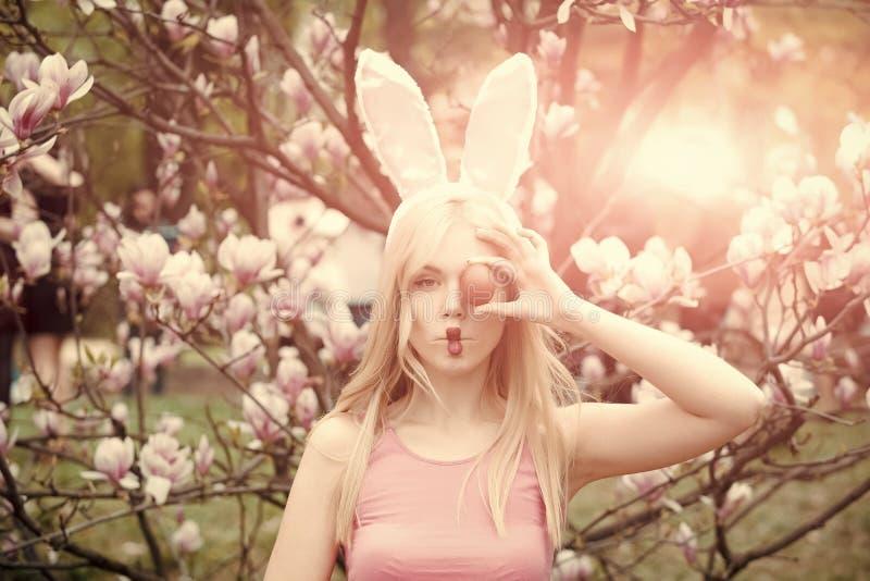 De viering van de de lentevakantie stock afbeeldingen