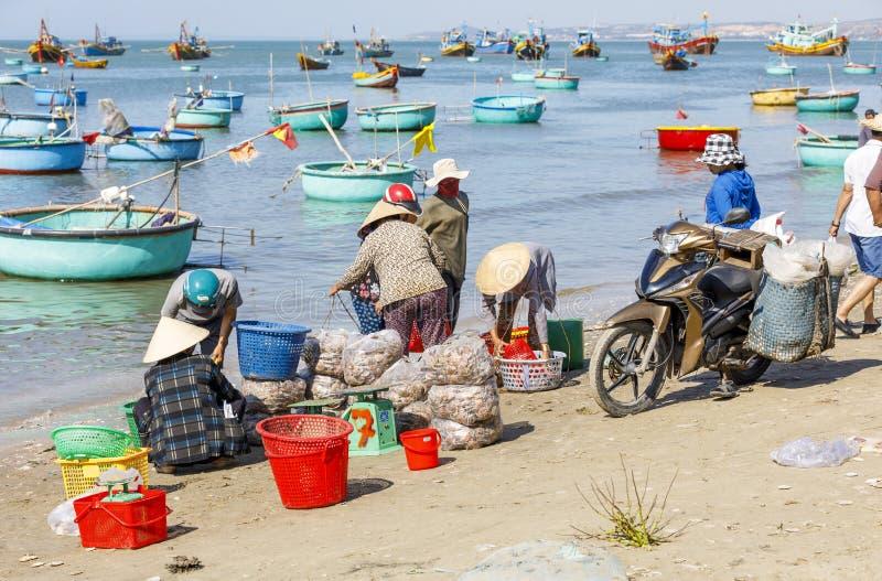 De Vietnamese mensen sorteren zeevruchten in een visserijhaven in Mui Ne, Vietnam stock foto