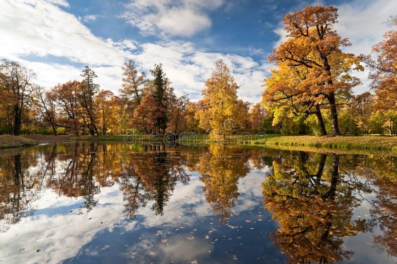 De vijver van de herfst in het park stock afbeeldingen