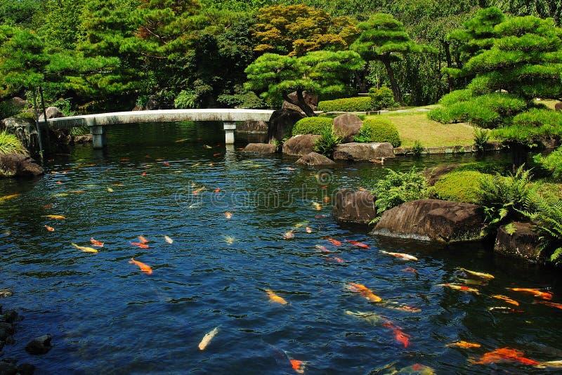 De Vijver van vissen bij Japanse Tuin royalty-vrije stock foto's