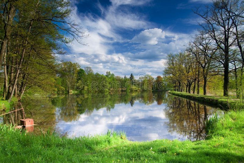 De vijverlandschap van de lente stock foto's