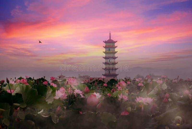 Download De Vijverzonsondergang Van Lotus Stock Afbeelding - Afbeelding bestaande uit traditioneel, stil: 10784373