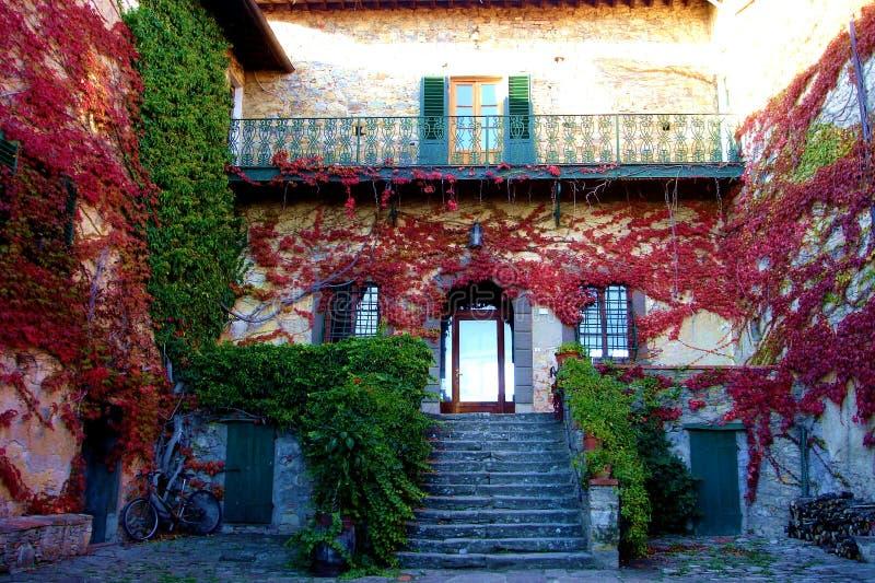 De villa van het platteland stock afbeelding