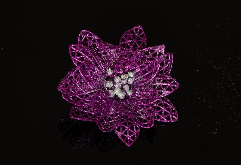 De violette decoratie van poinsettiakerstmis stock foto