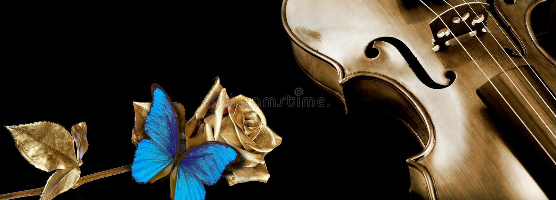 De viool en nam toe de gouden viool en mooie gouden namen op een zwarte achtergrond toe stock foto