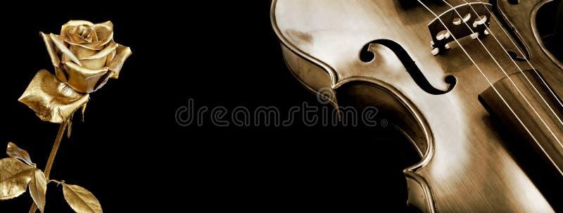 De viool en nam toe de gouden viool en mooie gouden namen op een zwarte achtergrond toe royalty-vrije stock afbeelding