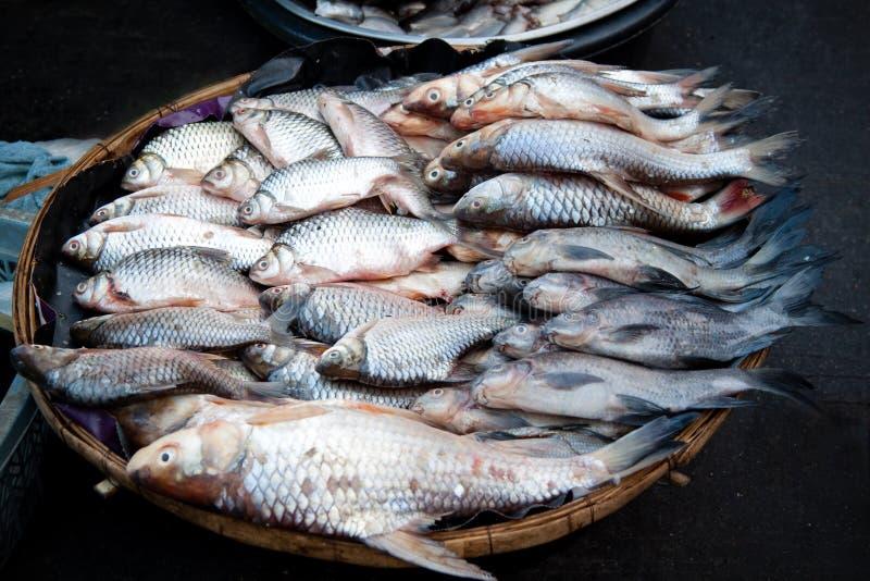 De vis verkoopt in lokale markt stock fotografie
