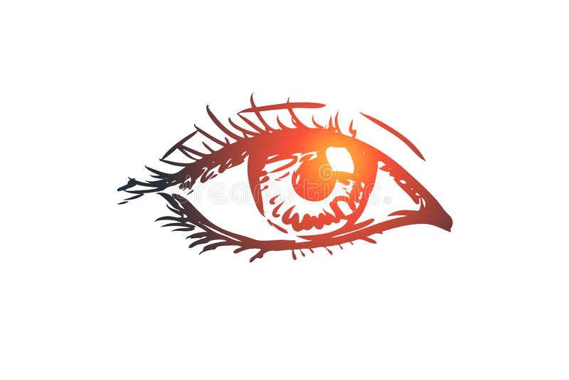 De visie, oog, ziet eruit, ziet, oogappelconcept Hand getrokken geïsoleerde vector royalty-vrije illustratie