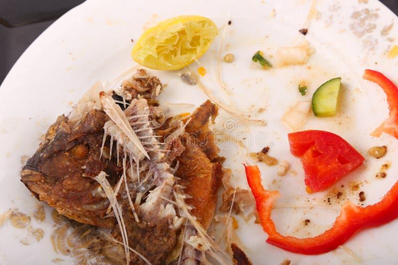 De vissen van het voedselschroot royalty-vrije stock fotografie